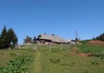Alpine Pasture Korošica